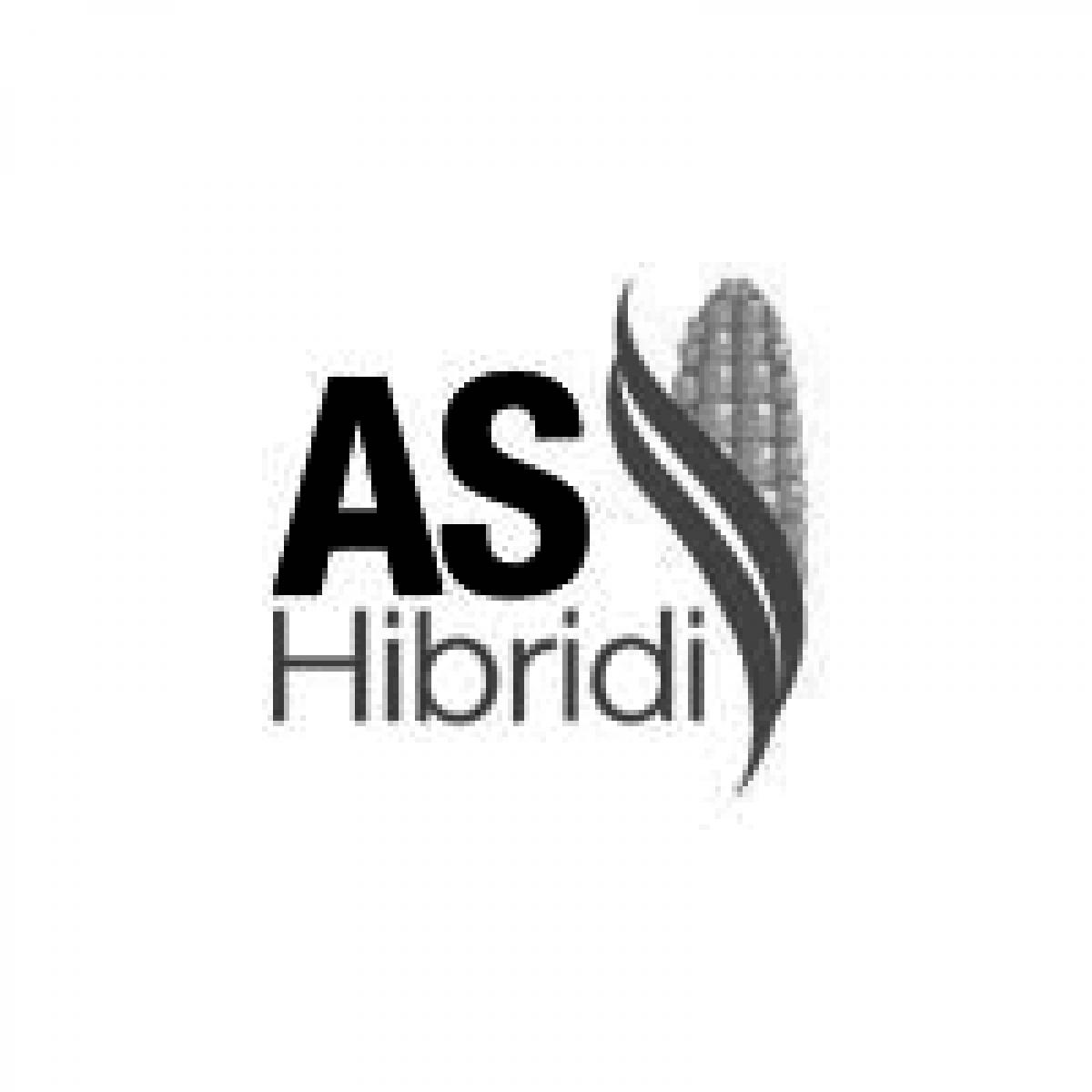 Bilbord za kompaniju AS hibridi